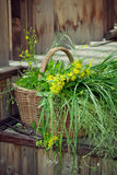 Basket of wild flowers and grass on country house steps Royalty Free Stock Image