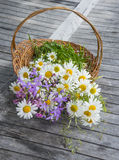 Basket with wild flowers Stock Photo