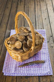 Basket with wild oyster mushrooms Royalty Free Stock Photography