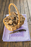 Basket with wild oyster mushrooms Royalty Free Stock Photo