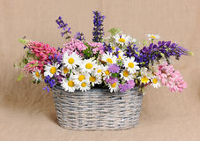 Basket with wildflowers Royalty Free Stock Images