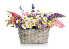 Basket with wildflowers Stock Photography