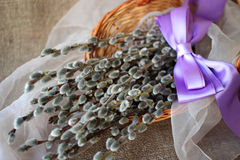 Basket willow basket Royalty Free Stock Images