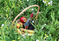 Basket with wine and fruit Stock Photography