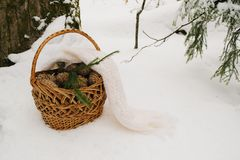Basket in Winter Forest. Nature, countryside. Snowcovered basket in the middle of snowy path in winter forest royalty free stock photo