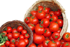 Free Basket With Tomatoes Stock Images - 10290144