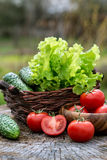 Basket and wooden plate with fresh vegetables (tomatoes, cucumbe Stock Image