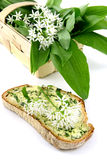 Basket wtih fresh ramson and slice of bread with butter Royalty Free Stock Photography