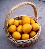 Basket of Yellow Lemons Royalty Free Stock Images