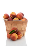 Basket of Yellow Peaches Stock Photography