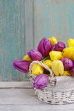 Basket of yellow and violet tulips on wooden table Royalty Free Stock Photography