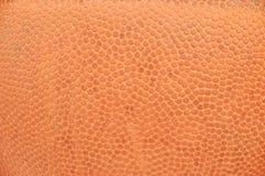 Basketbal #5 Stock Afbeeldingen