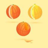Basketbal en fruit Vector Illustratie
