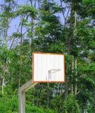 Basketbalhoogte in de wildernis Stock Foto's
