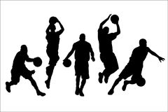 Free Basketball Stock Photos - 8051823