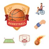 Basketball and attributes cartoon icons in set collection for design.Basketball player and equipment vector symbol stock. Illustration Royalty Free Stock Images