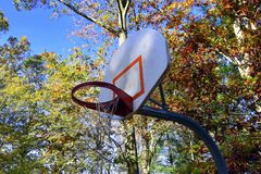 Basketball backboard with autumn tree background. Basketball backboard with orange rim and torn net. Outside with trees with leaves that are autumn colors Royalty Free Stock Images