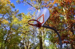 Basketball backboard with autumn tree background. Basketball backboard with orange rim and torn net. Outside with trees with leaves that are autumn colors Stock Images