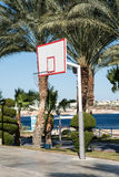 Basketball backboard in the palms Royalty Free Stock Photos