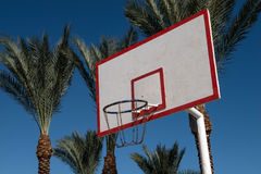 Basketball backboard in the palms Royalty Free Stock Photography