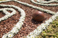 Basketball ball is in the flowered playing field Royalty Free Stock Photography