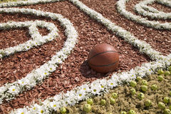 Basketball ball is in the flowered playing field Stock Images