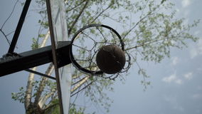 Basketball ball got in the ring stock footage
