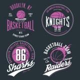 Basketball ball or sport game t-shirt design. New York team banner for sportswear emblem, usa basketball or streetball theme, net and basket for ball sport Royalty Free Stock Image