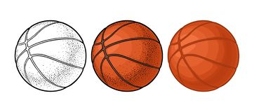 Basketball ball. Vector color engraving illustration. Isolated on white background. Basketball ball. Vector color engraving and flat illustration. Isolated on royalty free illustration