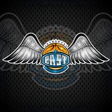 Basketball ball with wings and east lettering. Vector sport logo for any team. And championship royalty free illustration