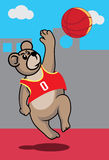 Basketball bear Royalty Free Stock Photos