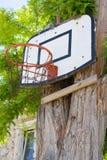 Basketball board Stock Photos