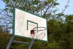 Basketball board and tree Royalty Free Stock Photo
