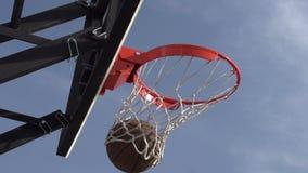 Basketball Championship stock video