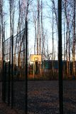 Basketball court in a birch grove. Royalty Free Stock Images