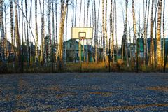 Basketball court in a birch grove. Stock Image