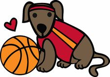 Basketball Dog Royalty Free Stock Photography