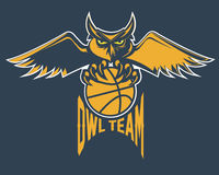Basketball emblem owl team Stock Images