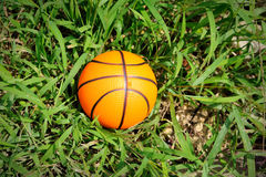 Basketball on the grass. Stock Photography