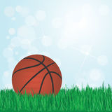 Basketball on grass Stock Photo