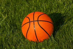 Basketball on the grass Royalty Free Stock Photo
