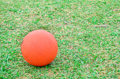 Basketball on green grass Stock Photo