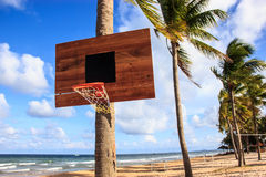 Basketball hoop on the beach with palm trees, sea, clouds and blue sky as a background.  Stock Photos