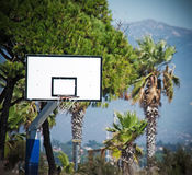 Basketball hoop in a green park Stock Image