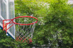 Basketball hoop in the park. With green trees as background Royalty Free Stock Images