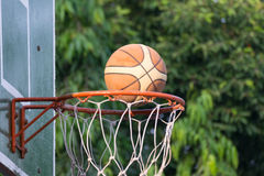 Basketball hoop in park Royalty Free Stock Images