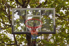 Basketball hoop in park. Basketball hoop make by wooden and ball in park Stock Photos