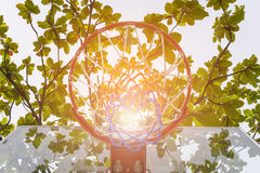 Basketball hoop in park. Basketball hoop make by wooden and ball in park Royalty Free Stock Photo