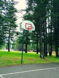 Basketball Hoop. A scenic basketball hoop located amongst the trees Stock Photos