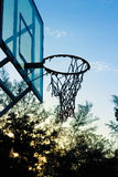 Basketball hoop. Tall sport sportsmen loop ball basketball tree pine sky background evening blue rope twine net shoot wood Stock Image